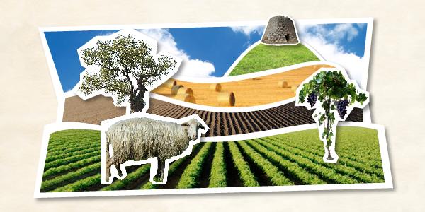 Ripensare l'agricoltura in Sardegna, nuovi strumenti