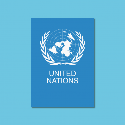 ELOE portfolio ONU United Nations