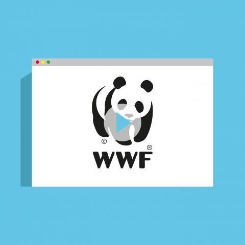 ELOE portfolio WWF Guyana